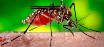 Más de 4.500 casos de dengue reporta el departamento del Tolima