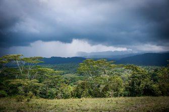 Preocupación por cacería ilegal de fauna silvestre en el Bosque de Galilea