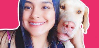 El gobierno que olvidó los animales en el Tolima – Séptima parte