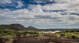 Parque Nacional Natural El Tuparro: 40 años atesorando millones de expresiones de la biodiversidad