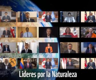Líderes mundiales se comprometen a revertir la pérdida de la naturaleza para el 2030