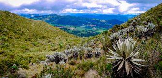 ¿Qué significa que el Parque Nacional Natural Chingaza esté ahora en la Lista Verde?