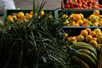 """Consuma alimentos de calidad y a buen precio con """"Del Campo A La Ciudad"""""""