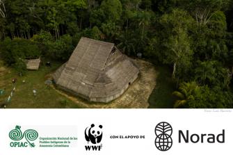 2020: El invaluable rol de los pueblos indígenas