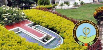 Profesores de la UT rechazan la indebida injerencia de Cortolima y el rector