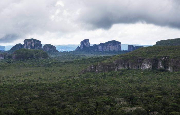 La deforestación global avanza en 24 frentes y nueve de ellos están en América Latina