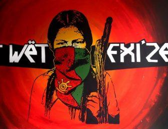 Pueblos en Camino: tejer resistencia desde el territorio
