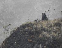 El increíble encuentro que un guardaparques tuvo con un oso andino