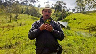 Sin avances en la investigación del asesinato del guardian del loro orejiamarillo