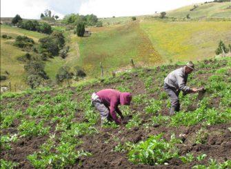 Movimiento campesino en el Tolima le apuesta al alivio financiero para el campesinado por medio de la Ley 2071 de 2020