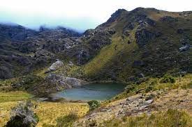 Se cae el Mico que pretendía abrirle el paso a la explotación minera en los Bosques Alto Andino