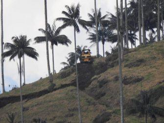 Empresa aguacatera fue multada por causar daños ambientales en Villamaría