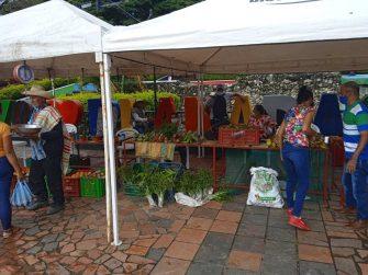 Economías solidarias: Una alternativa a la crisis económica rural en el Tolima